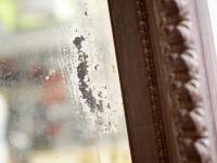 Loft design faragott tükör geschnitzt Spiegel carved mirror